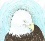 Eagle by Rebecca Bender
