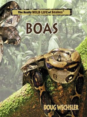 Boas by Doug Wechsler